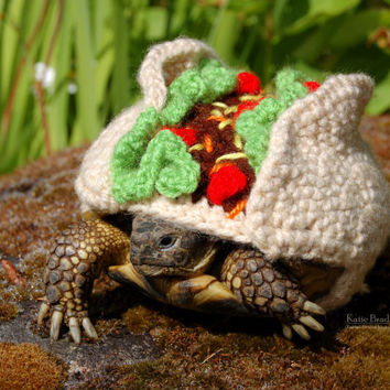 Taco tortoise cozy - made to order