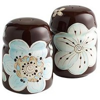 Pier 1 Imports - Product Details - Cassidy Salt & Pepper Shakers