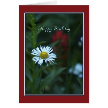 Happy Birthday Card , Single White Daisy, No Name