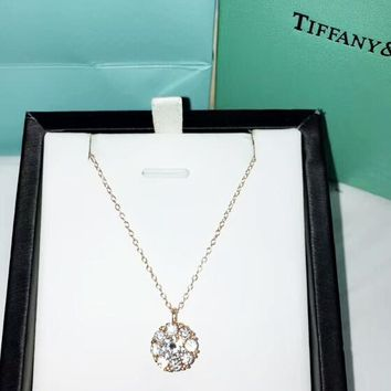 Tiffany & CO Fashion New Diamond Pendant Sterling Silver Personality Women Necklace Rose Gold