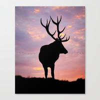 Stag And Sunset Canvas Print by Linsey Williams Wall Art, Clothing, And