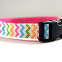 Spring Chevron Dog Collar Adjustable Sizes (XS, S, M)