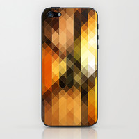 from fall to winter iPhone & iPod Skin by Sylvia Cook Photography
