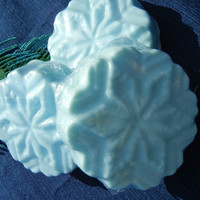 Natural Cocoa Butter Soap Snowflake Winter Garden Scented