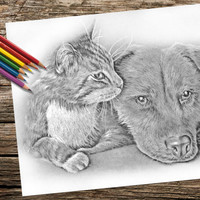 Cat and Dog, coloring book page, adult coloring book, coloring page, adult coloring page, coloring book for adult, printable, cat art, dog