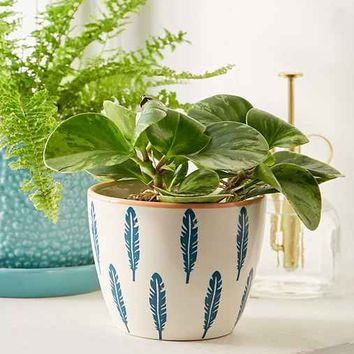Feather Ceramic Planter