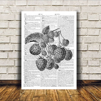 Kitchen decor Raspberry poster Retro print Antique art RTA176