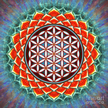 Red Lotus - Flower Of Live Art Print