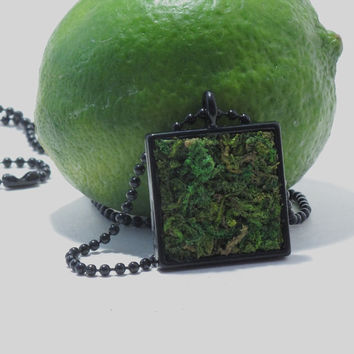 Moss Pendant Hangs from Black Ball Chain Necklace, Terrarium Necklace, Eco Friendly Moss Necklace, Living Plant Jewelry, Earth Day