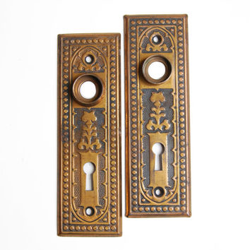 FREE SHIPPING Vintage Antique Pair Ornate Victorian Iron Backplates Escutcheons, E1121