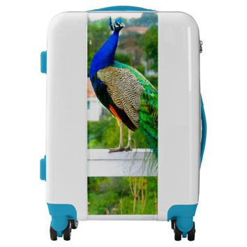Bright blue & green peacock photo luggage suitcase