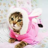 Cute Pet Cat Clothes Easter Bunny Costume Hooded Coat Fleece Warm Rabbit Clothes Outfit for Cats New Cat Costume 29S2