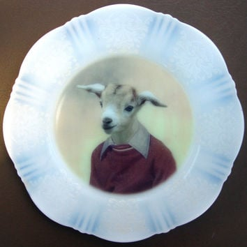 Billy Goat Portrait Plate - Altered Vintage Plate 8""