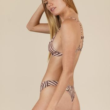 ACACIA - Brazil Bottom | Zebra