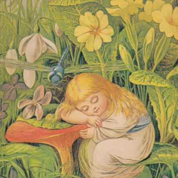Nymphets and Fairies: Three Victorian Children's Book Illustrators