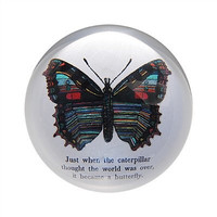 Paper Weight ~ Butterfly