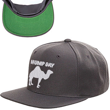 Hump Day Snapback Hat