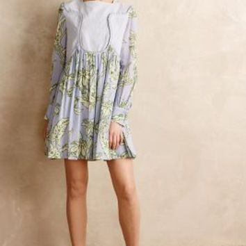 Pleated Greenhouse Dress