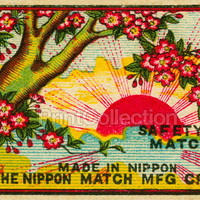 Sunset through Cherry Blossoms, Safety Match