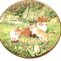 Peter Barrett Plate Woodland Year THE BUTTERFLY CHASE IN MAY Red Foxes