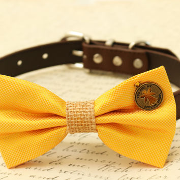 Yellow Dog Bow Tie, Bow attached to brown dog collar, Pet wedding accessory, Christmas gift, Cat Bow tie, Charm, you are my angel