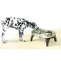 Elevated Pet Bowl Tray