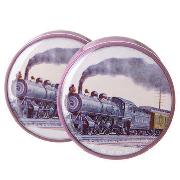 Trainspotting BMA Plugs (6mm-27mm)