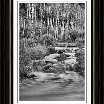 Bonanza Streaming Framed Print