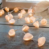 SEASHELL LIGHTS