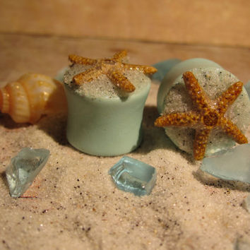 "Pair of Real Starfish on Seafoam Green Plugs with Real Beach Sand - Handmade Girly Gauges - Size 2g, 0g, 00g, 7/16"", 1/2"", 9/16"", 5/8"", 3/4"""