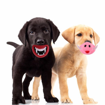 Funny Squeaky Toys