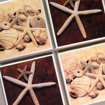 Set of 4 beach coasters, seashell, sand dollar, cottage, drink coasters, decorative coasters, beach cottage, starfish, gift idea, wedding,