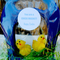 Chick Magnet for Easter