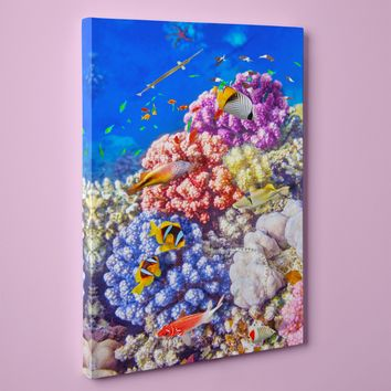 "Caribbean Coral and Tropical Fish, Underwater Photo (24"" x 36"") - Canvas Wrap Print"