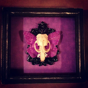Monster with Violet Butterfly Wings Shadow Box/ by AtropineSteele