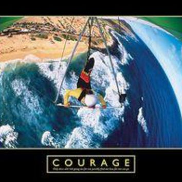 Courage - Hang Glider
