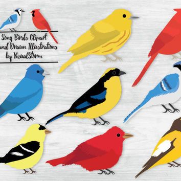 Song Birds Clipart Digital Bird Illustrations Warbler Cardinal Indigo Bunting Tanager Blue Jay Goldfinch Grosbeak Scrapbooking Card Making