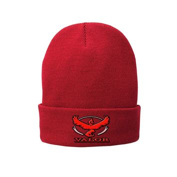 Pokemon Go Team Valor Beanie