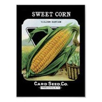 Sweet Corn Vintage Seed Packet Poster
