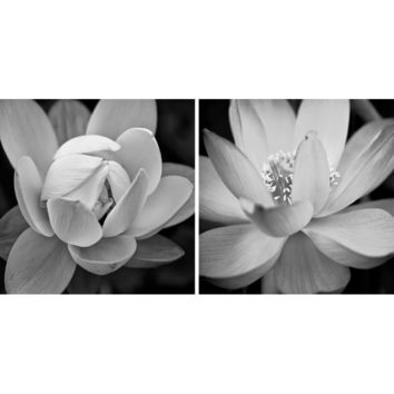 'Lotus' 2 Piece Photographic Print on Wrapped Canvas Set