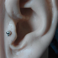 Mini SKull tragus / cartilage /helix earing (1pc)