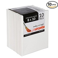 8 x 10 Inch Stretched Canvas Value Pack of 10