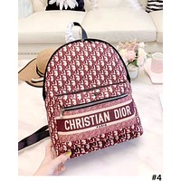 Dior 2019 new personality men and women models wild outdoor sports backpack #4
