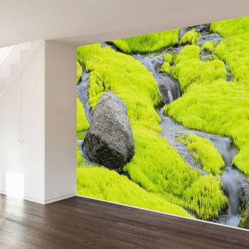 Paul Moore's Icelandic Moss Mural wall decal