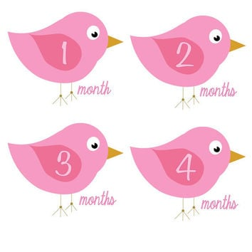 Baby Month Stickers Monthly Onesuit Stickers Bird Birdie Girl Hot Pink Baby Sticker Monthly Onesuit Sticker Baby Shower Gift Photo Prop Chloe1