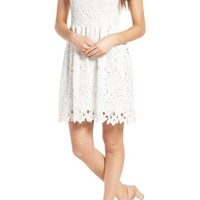 Dee Elly Lace Skater Dress | Nordstrom