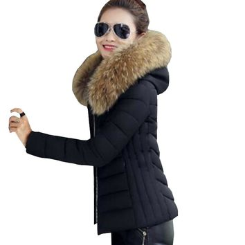 Fashion winter coat women Faux raccoon fur collar Winter jacket women Down jacket warm parka Winter female Outerwear ZY2562