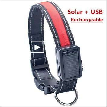 Solar Chargeable Led Light up Pet Dog Collar Night Safety Reflective Glow Flashing Dog Cat Collar USB Rechargeable