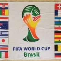 3'x5' 3 x 5 FT BRAZIL World Cup SOCCER FLAG 2014 All Groups A B C D E F G H