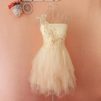 Embroidery lace tutu dress A 083124
